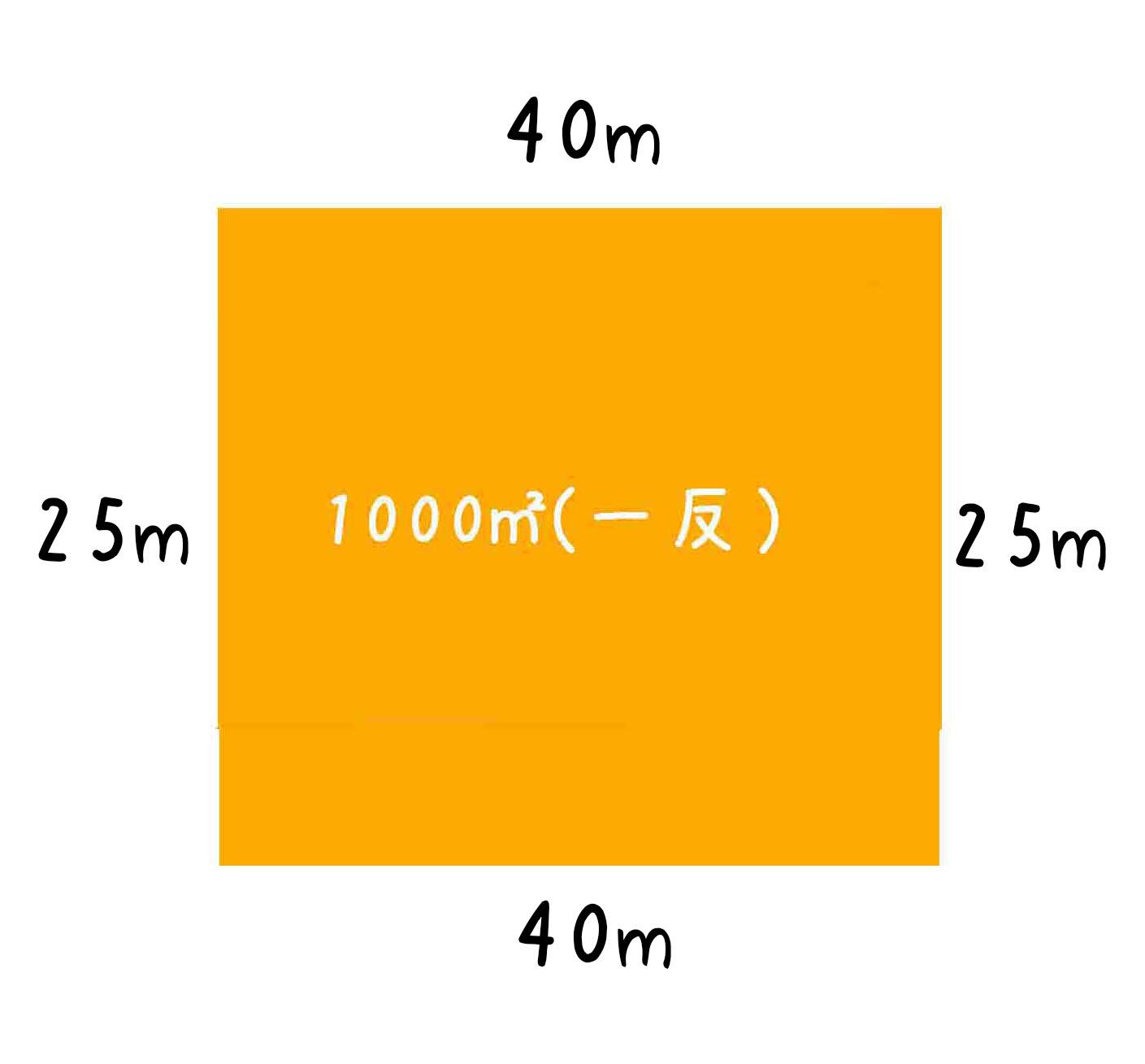 1反の畑25m×40m