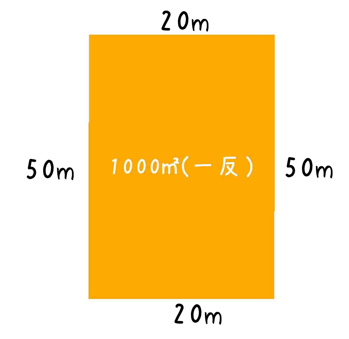 1反の畑20m×50m