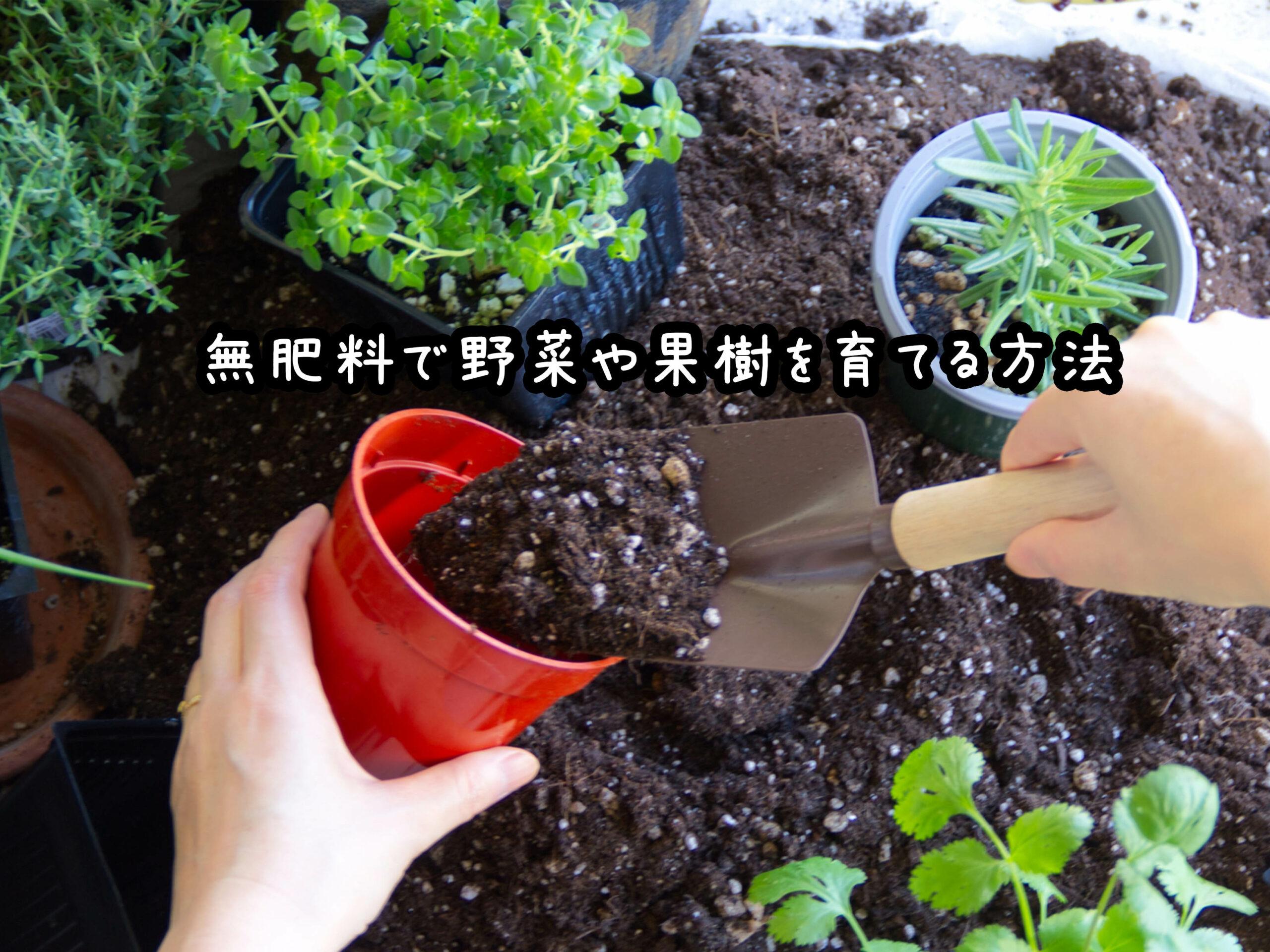 無肥料栽培